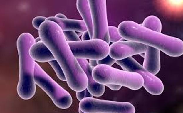 difteria causas