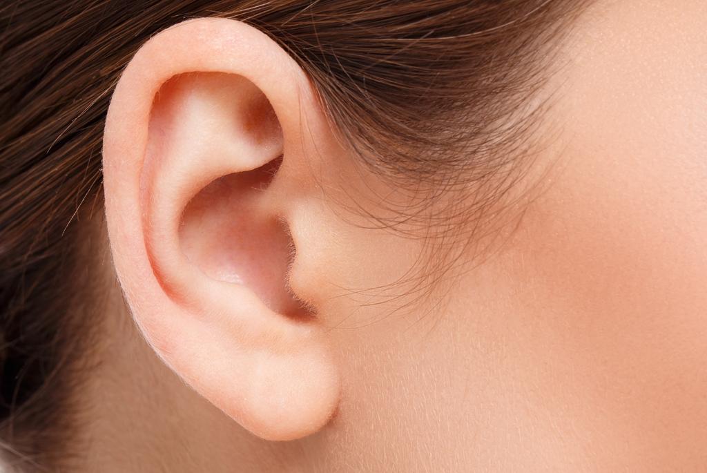 insecto en el oído sintomas