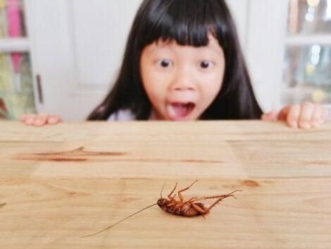 picadura de cucaracha peligros